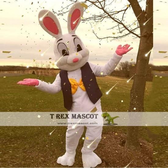 Easter bunny mascot cosutme Easter rabbit mascot